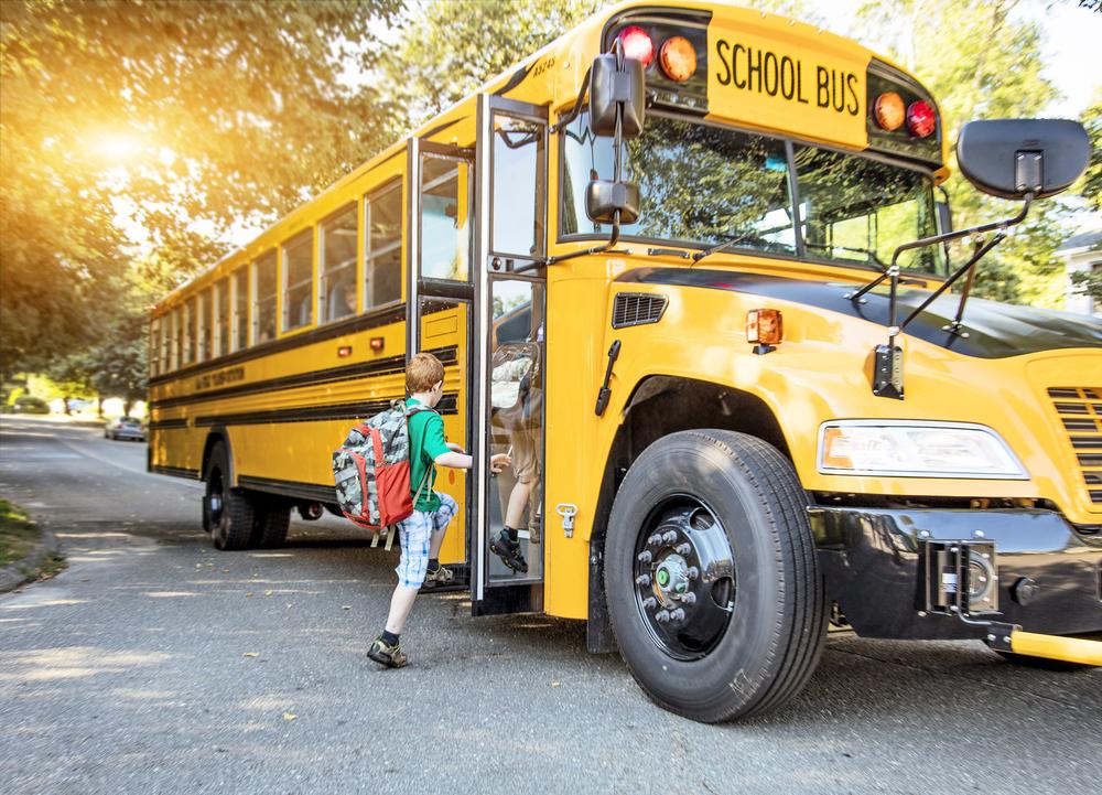 School Bus Crashes