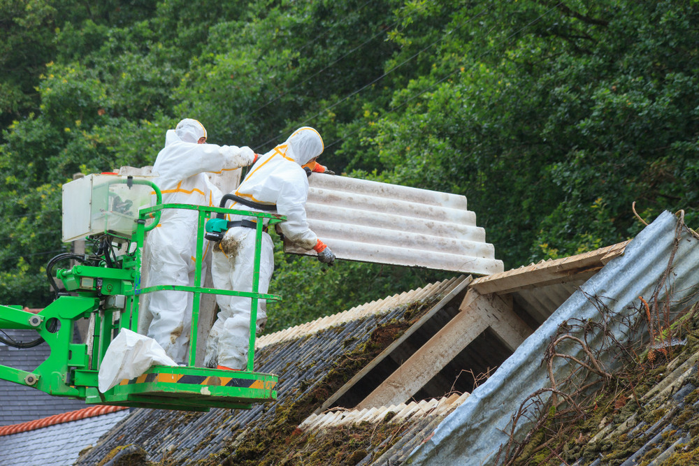Mold and Asbestos Attorney